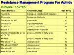 resistance management program for aphids13