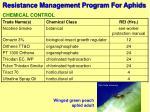 resistance management program for aphids14