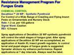 resistance management program for fungus gnats75