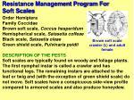 resistance management program for soft scales