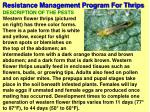 resistance management program for thrips54