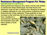 resistance management program for thrips55