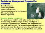 resistance management program for whiteflies