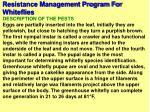 resistance management program for whiteflies43