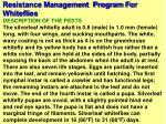 resistance management program for whiteflies44