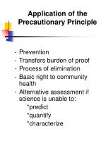 application of the precautionary principle