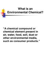 what is an environmental chemical