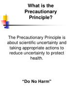 what is the precautionary principle
