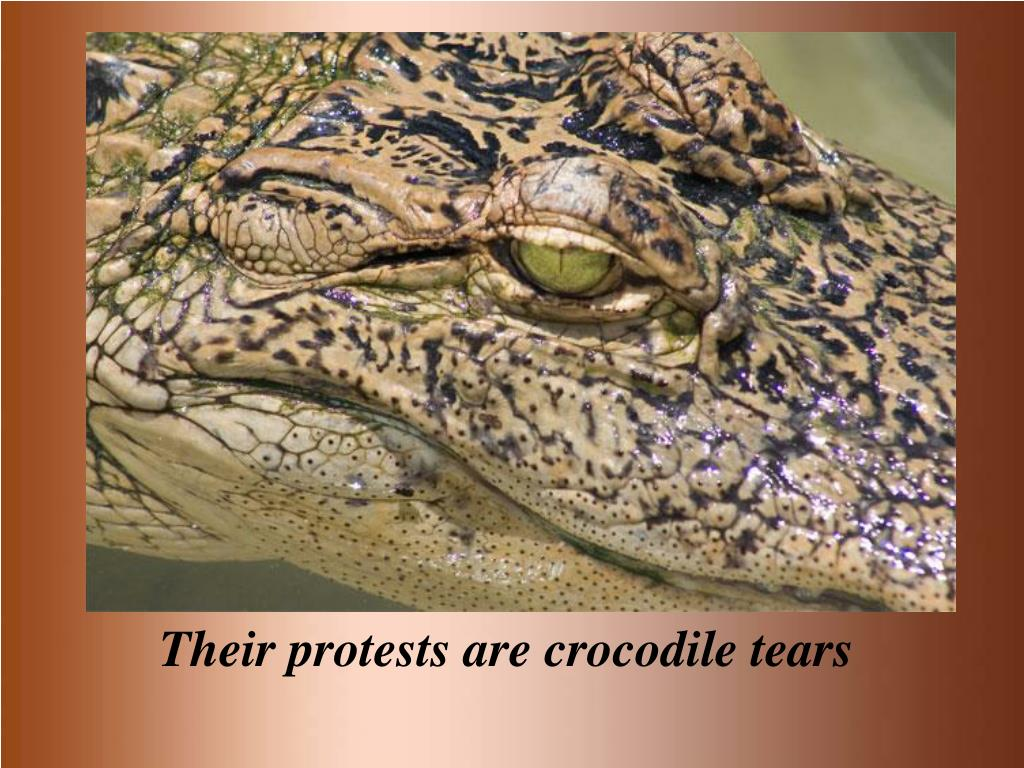 Their protests are crocodile tears