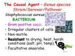the causal agent genus species strain serovar pathovar