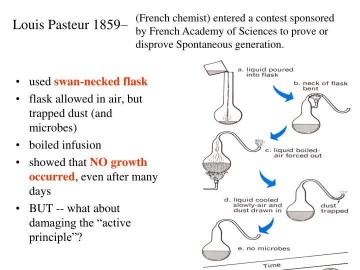 who disproved the theory of spontaneous generation