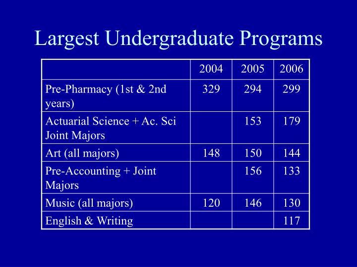 Largest Undergraduate Programs