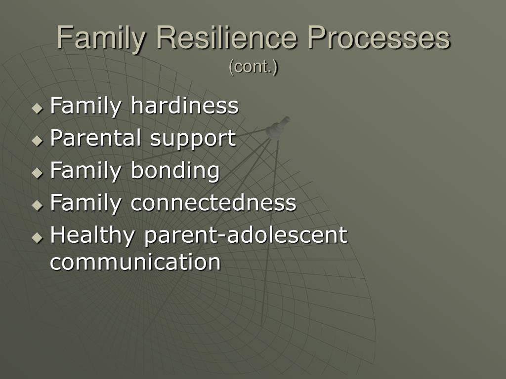 Family Resilience Processes