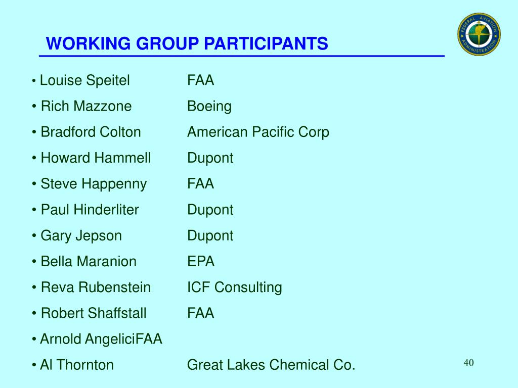 WORKING GROUP PARTICIPANTS