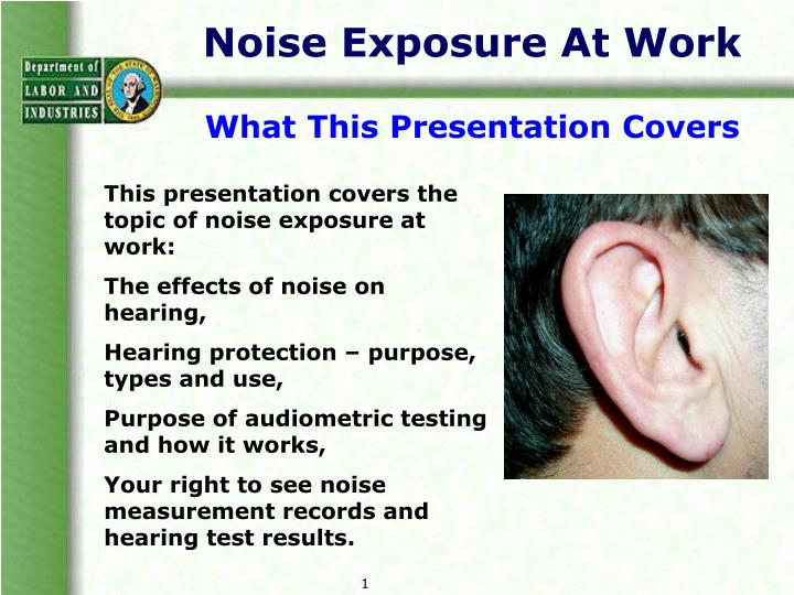 Noise Exposure At Work
