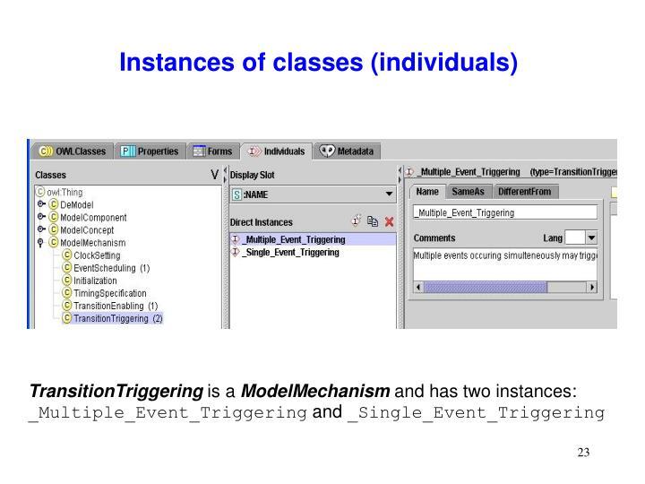 Instances of classes (individuals)