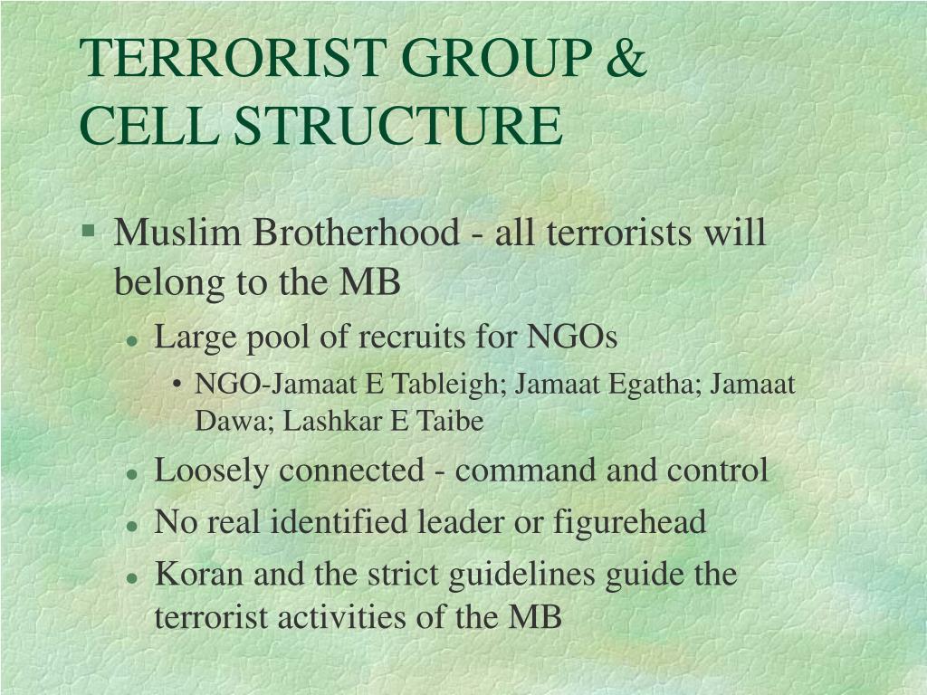 TERRORIST GROUP &