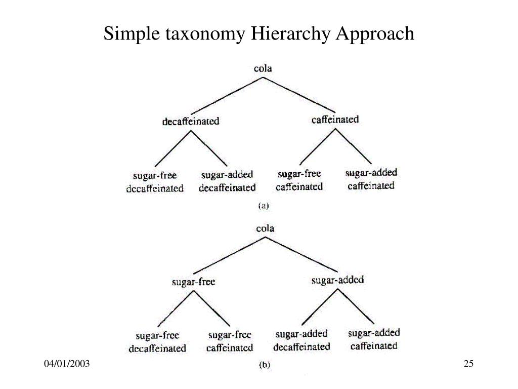 Simple taxonomy Hierarchy Approach