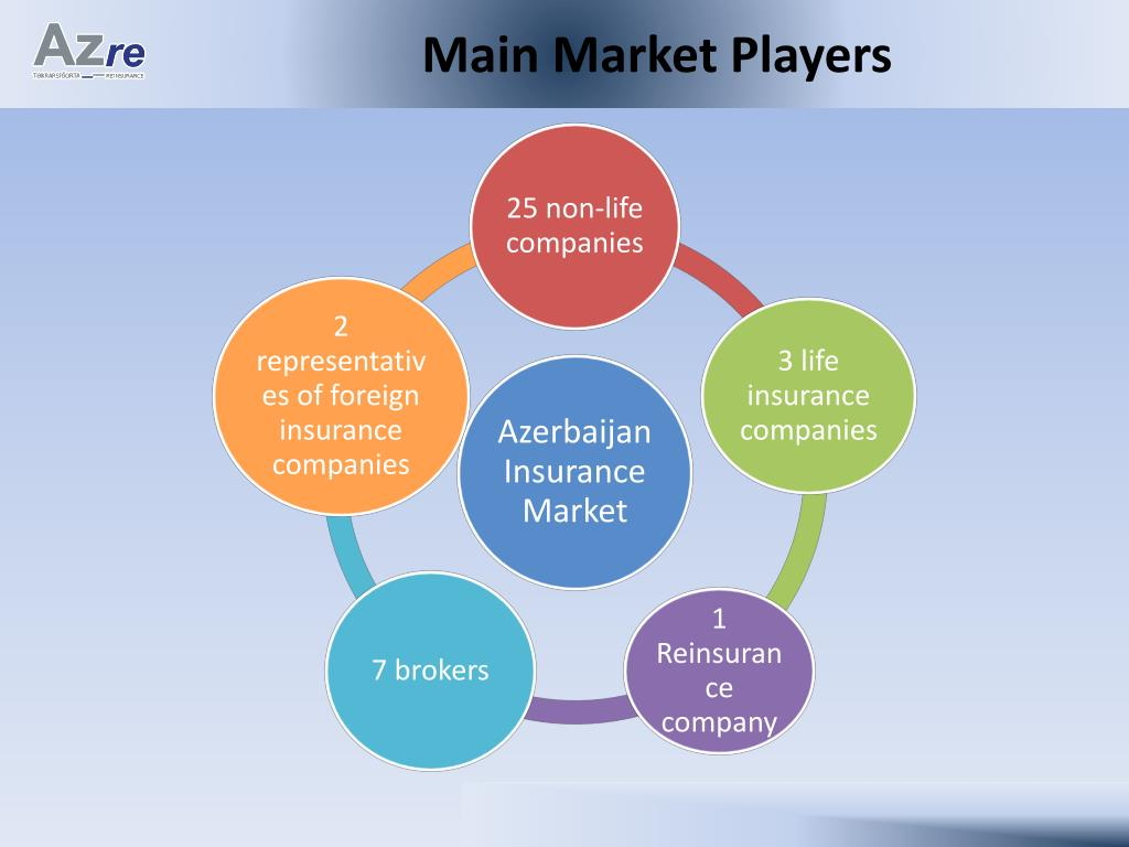 Main Market Players