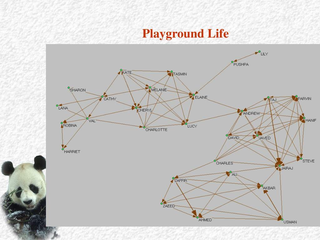 Playground Life