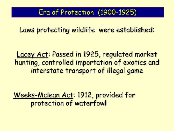 Era of Protection  (1900-1925)