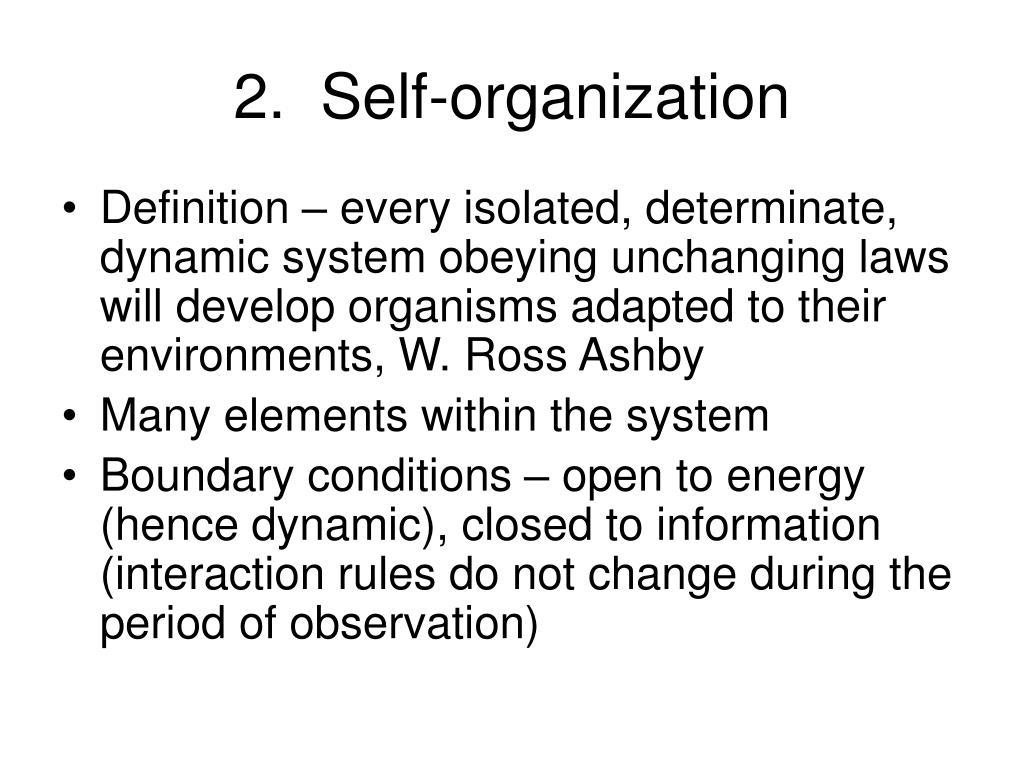 2.  Self-organization