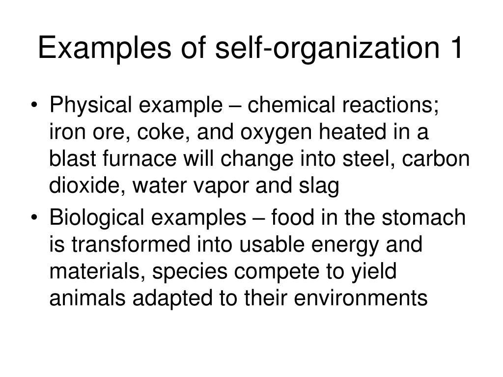 Examples of self-organization 1