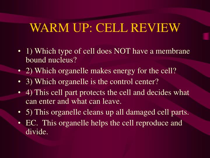warm up cell review n.
