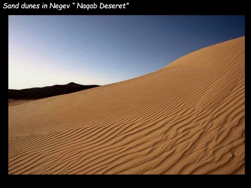 "Sand dunes in Negev "" Naqab Deseret"""