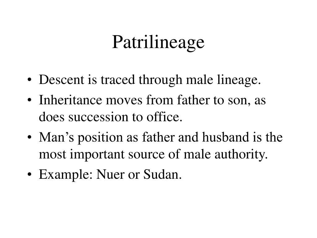 Patrilineage