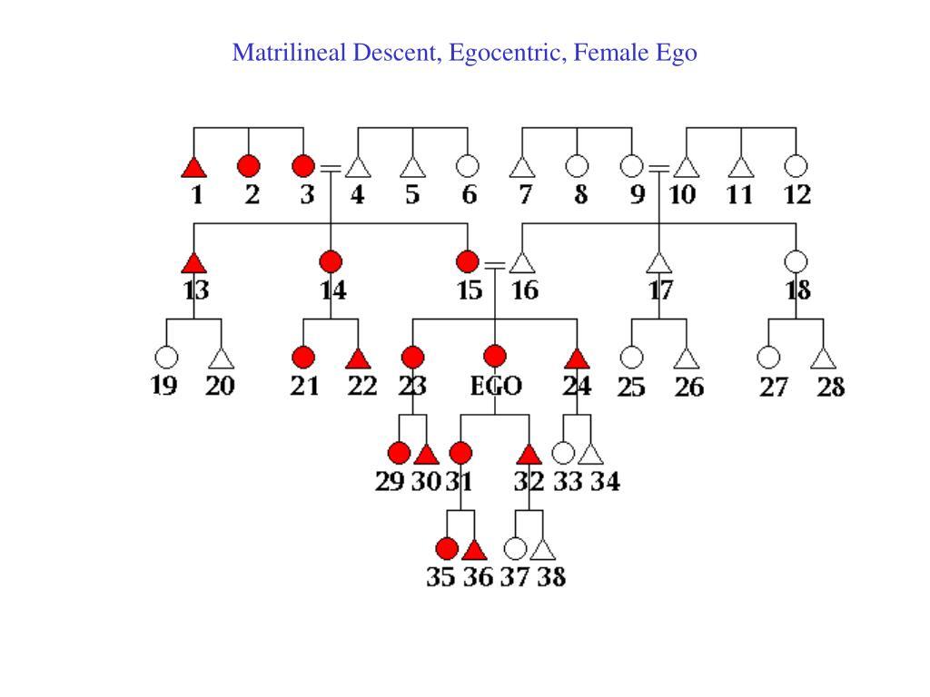 Matrilineal Descent, Egocentric, Female Ego