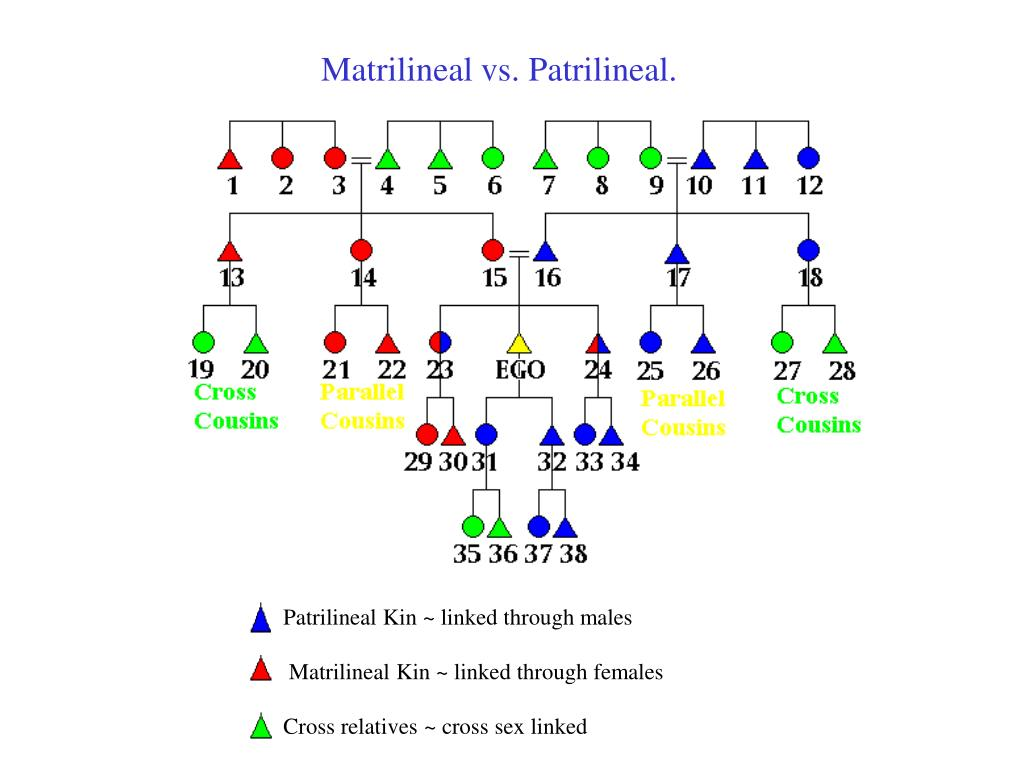 Matrilineal vs. Patrilineal.