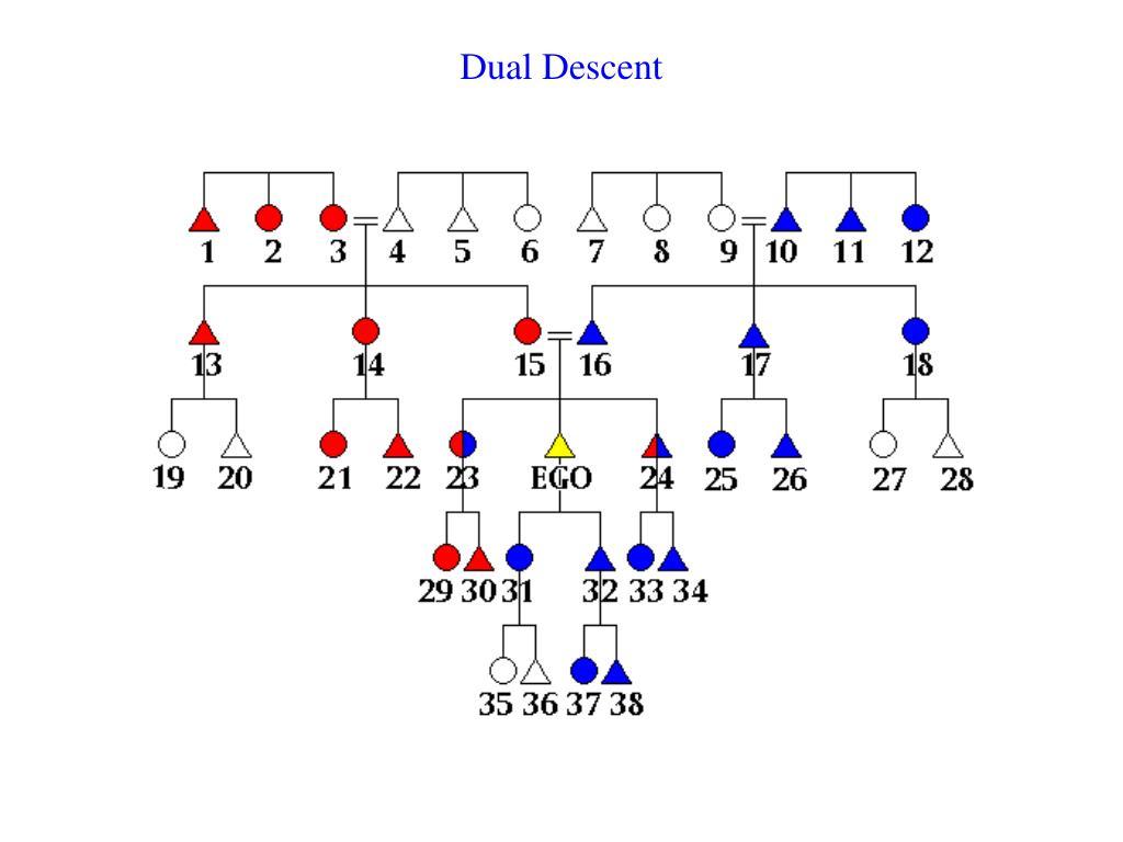 Dual Descent