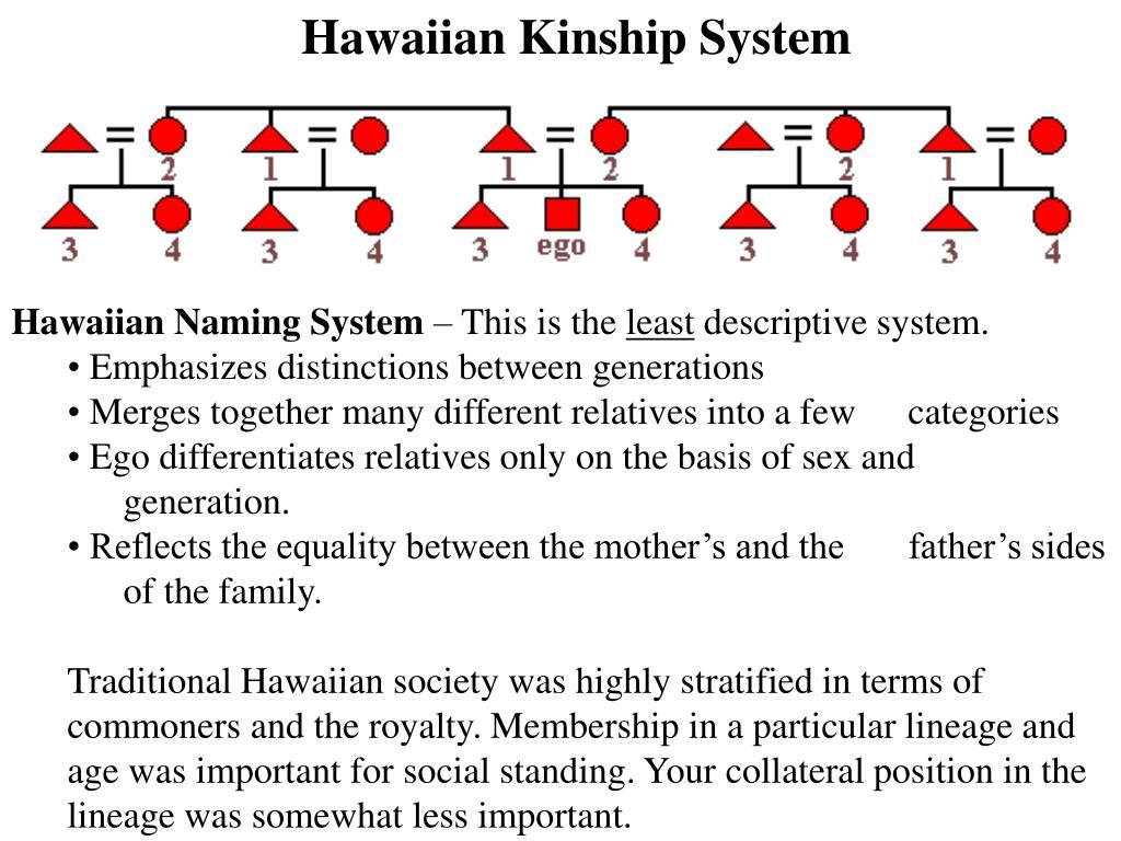Hawaiian Kinship System