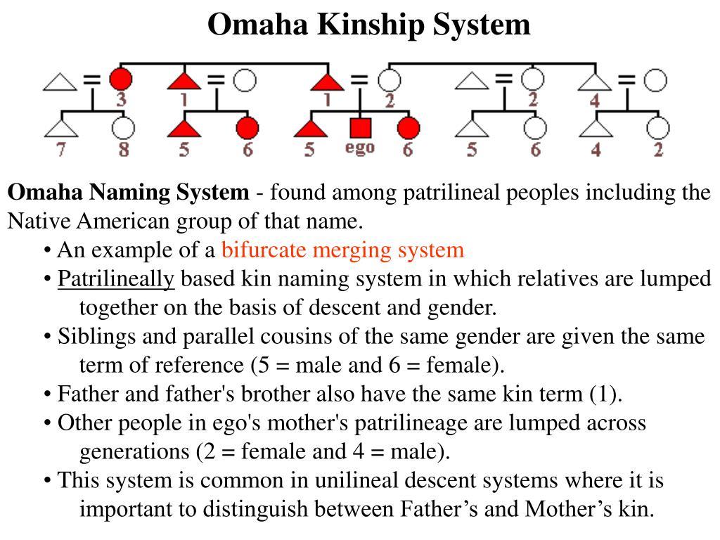 Omaha Kinship System