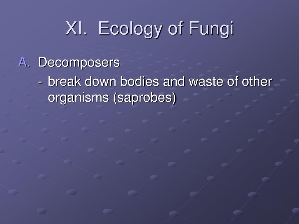 XI.  Ecology of Fungi