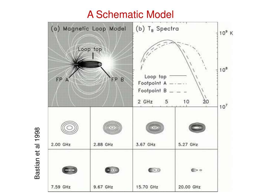 A Schematic Model