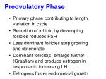 preovulatory phase