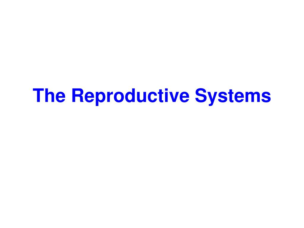 the reproductive systems l.