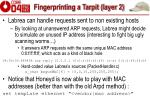 fingerprinting a tarpit layer 2