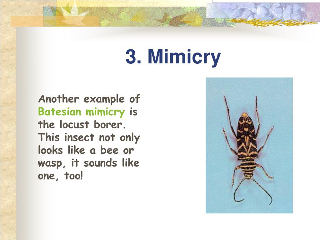 3. Mimicry