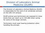 division of laboratory animal medicine dlam