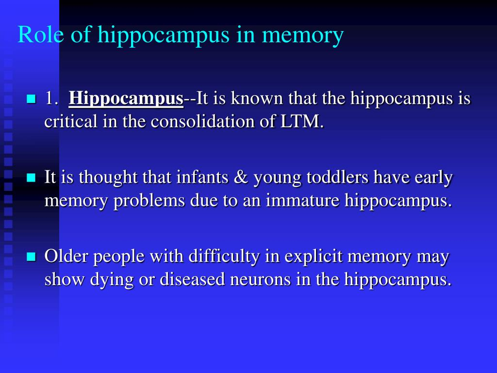 Role of hippocampus in memory
