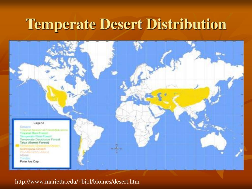 Temperate Desert Distribution