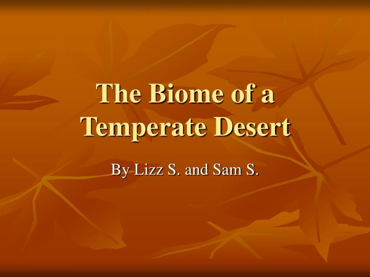 The biome of a temperate desert