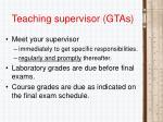 teaching supervisor gtas