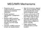 meg fmri mechanisms