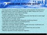 vision and concrete action