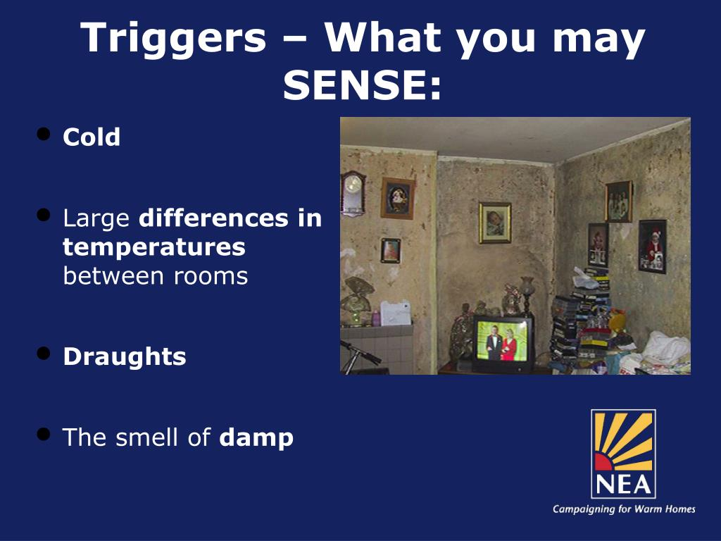 Triggers – What you may SENSE: