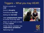 triggers what you may hear